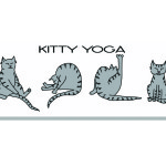 Kitties have the natural ability to do yoga!